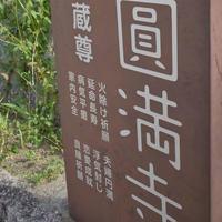圓満寺の写真・動画_image_633752