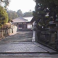 東大寺法華堂(三月堂)の写真・動画_image_636334