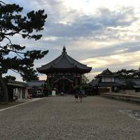 興福寺 南円堂(西国9番)の写真・動画_image_647473