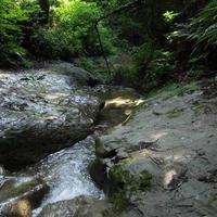 陣ケ下渓谷公園の写真・動画_image_654374