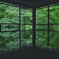 瑠璃光院の写真・動画_image_674190