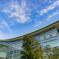 羽田空港国際線ターミナルビルの写真・動画_image_685821