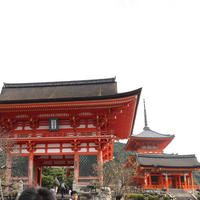 清水寺の写真・動画_image_690618