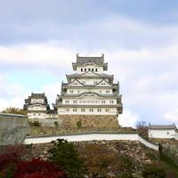 姫路城の写真・動画_image_694230