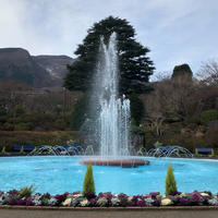 箱根強羅公園の写真・動画_image_700386