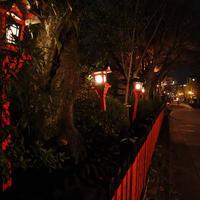 祇園白川の写真・動画_image_705553