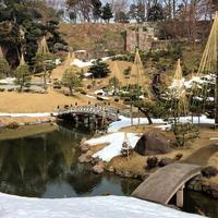 玉泉院丸庭園の写真・動画_image_707230