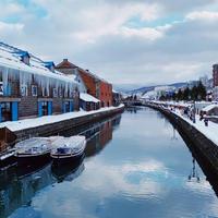小樽運河の写真・動画_image_712792