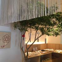 むすびcafeの写真・動画_image_712955