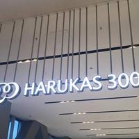 ハルカス300 展望台の写真・動画_image_713136