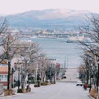 八幡坂の写真・動画_image_713468