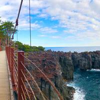 城ヶ崎海岸の写真・動画_image_718053