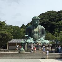 鎌倉大仏殿高徳院の写真・動画_image_725561