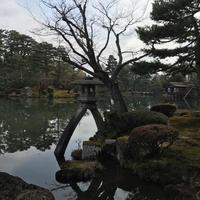 兼六園の写真・動画_image_731500