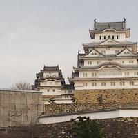 姫路城の写真・動画_image_736345