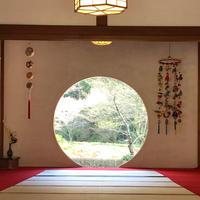 明月院(あじさい寺)の写真・動画_image_749735