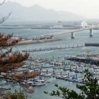 海老山公園の写真・動画_image_753771