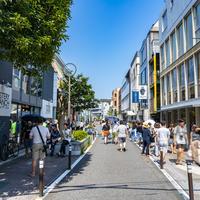 キャットストリートの写真・動画_image_755683