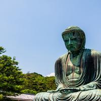 鎌倉大仏殿高徳院の写真・動画_image_760877