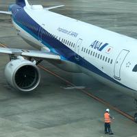 大阪国際空港(伊丹空港)の写真・動画_image_767438