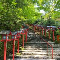 貴船神社の写真・動画_image_785312