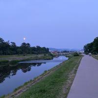 鴨川の写真・動画_image_785317
