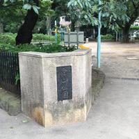 白山神社の写真・動画_image_790526