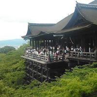 清水寺の写真・動画_image_793632
