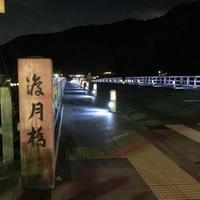 渡月橋の写真・動画_image_797071