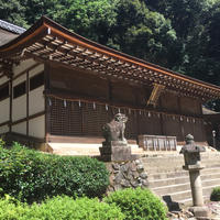 宇治上神社の写真・動画_image_797144