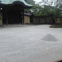 高台寺の写真・動画_image_801348