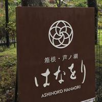 箱根・芦ノ湖 はなをりの写真・動画_image_816150