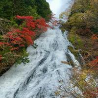 湯滝の写真・動画_image_828954
