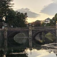 皇居外苑の写真・動画_image_847693