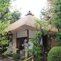 松花堂庭園・美術館の写真・動画_image_85630