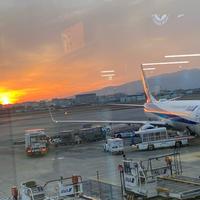 大阪国際空港(伊丹空港)の写真・動画_image_861075