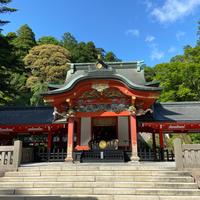 霧島神宮の写真・動画_image_861416