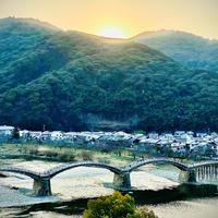 錦帯橋の写真・動画_image_881392