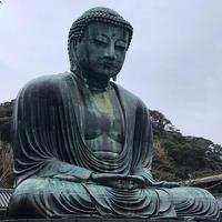 鎌倉大仏殿高徳院の写真・動画_image_889654