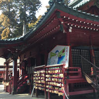 箱根神社の写真・動画_image_890399