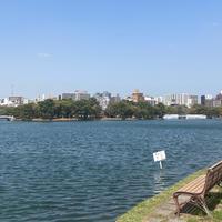 大濠公園の写真・動画_image_895032