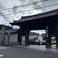 妙心寺の写真・動画_image_895637