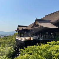 清水寺の写真・動画_image_908854