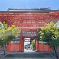 八坂神社の写真・動画_image_909140