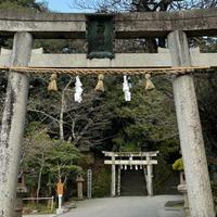 玉作湯神社の写真・動画_image_917872