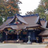 千葉神社の写真・動画_image_926895