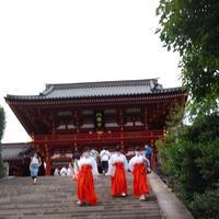 鶴岡八幡宮の写真・動画_image_935260