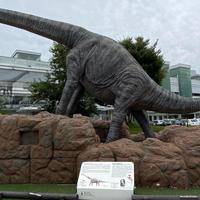 福井駅 西口広場(恐竜広場)の写真・動画_image_978849