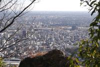 金華山ドライブコースを歩くの写真・動画_image_20909