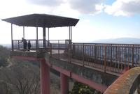 金華山ドライブコースを歩くの写真・動画_image_20910